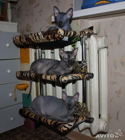Сделать гамак на батарею для кошки своими руками